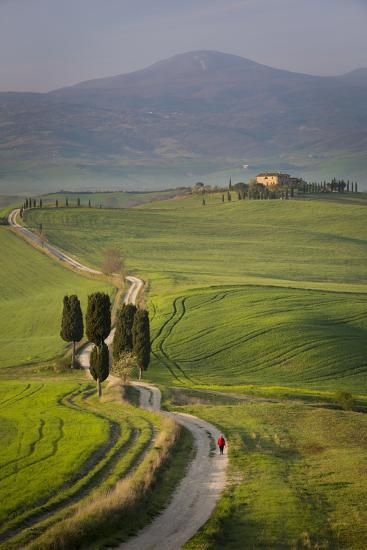 Cypress Trees and Winding Road to Villa Near Pienza, Tuscany, Italy-Brian Jannsen-Photographic Print