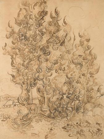 https://imgc.artprintimages.com/img/print/cypresses-1889-by-vincent-van-gogh_u-l-q1gzpko0.jpg?p=0