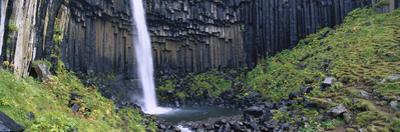 Svartifoss Waterfall, Flanked by Basalt Columns, Skaftafell National Park, Iceland