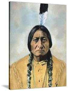 Sitting Bull (1834-1890) by D. F. Barry