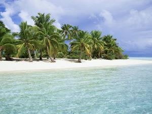Paradise Beach, One Foot Island, Aitutaki, Cook Islands, South Pacific Islands by D H Webster