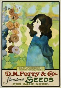 D.M. Ferry and Co's Standard Seeds Poster