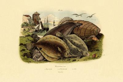 Dab, 1833-39--Giclee Print