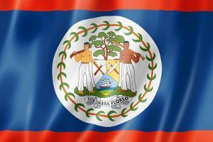 Belize Flag by daboost