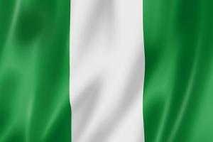Nigerian Flag by daboost