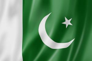 Pakistani Flag by daboost