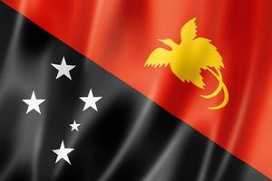 Papua New Guinea Flag by daboost