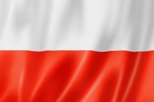 Polish Flag by daboost