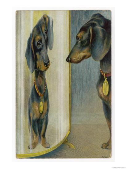 Dachshund Admires Its Reflection in a Distorting Mirror--Giclee Print