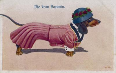 Dachshund Dressed as a Woman