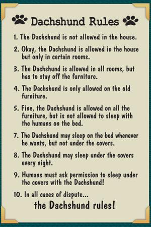 Dachshund House Rules