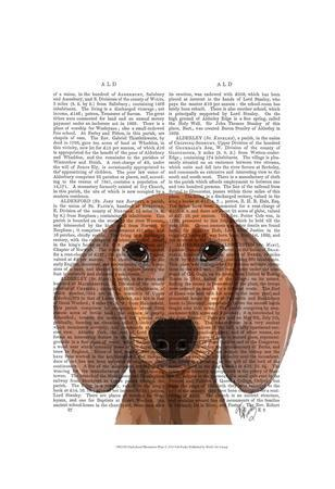 https://imgc.artprintimages.com/img/print/dachshund-illustration-plain_u-l-f86p2l0.jpg?p=0