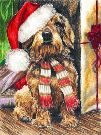 https://imgc.artprintimages.com/img/print/dachsund-santa-hat_u-l-pyklwr0.jpg?p=0
