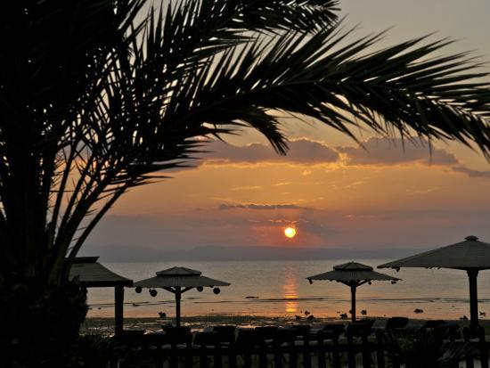 Dahab, Egypt, Middle East:Silhouette of Palm Tree over the Sunset-Brimberg & Coulson-Photographic Print