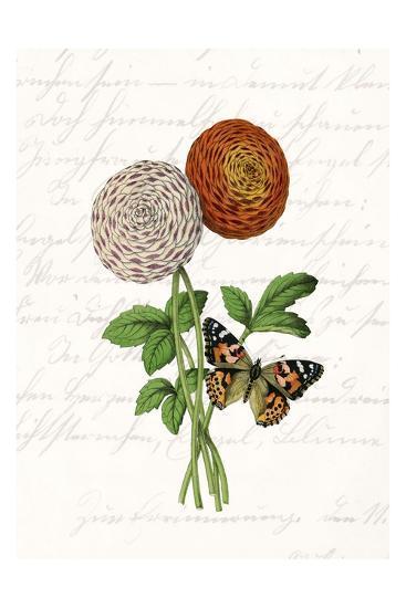 Dahlia 2-Kimberly Allen-Art Print