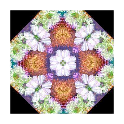 Dahlia Cross ORnament-Alaya Gadeh-Art Print