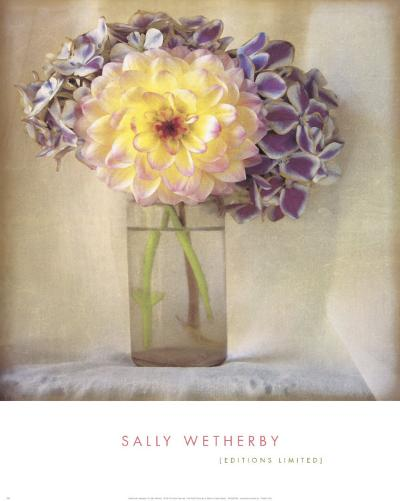 Dahlia with Hydrangeas I-Sally Wetherby-Art Print