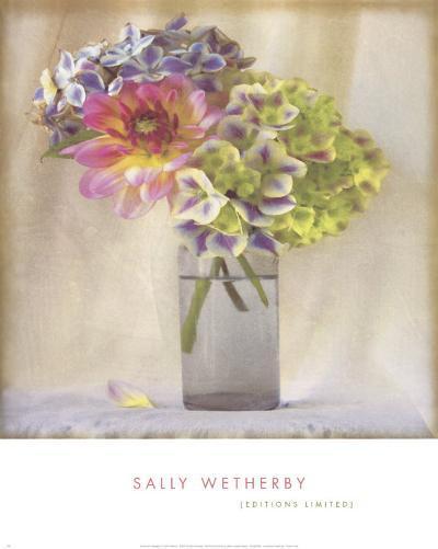 Dahlia with Hydrangeas II-Sally Wetherby-Art Print