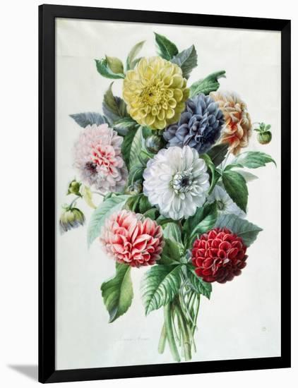 Dahlia-Marie-Anne-Framed Giclee Print