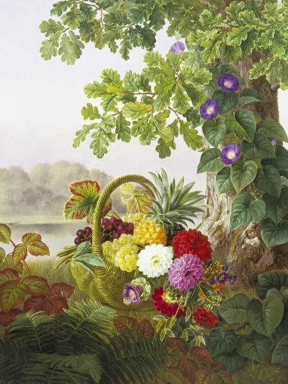 Dahlias, Asters and Morning Glory-Johan Laurentz Jensen-Premium Giclee Print