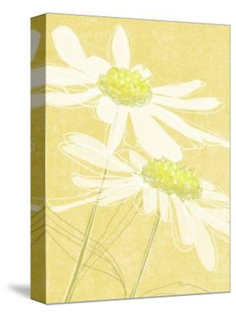 Daisies in Gold