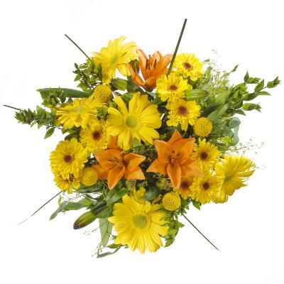 Daisy and Lily Bouquet-James Forte-Photographic Print