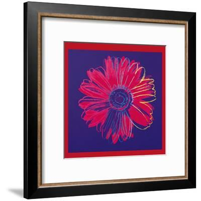 Daisy, c.1982 (Blue and Red)-Andy Warhol-Framed Art Print