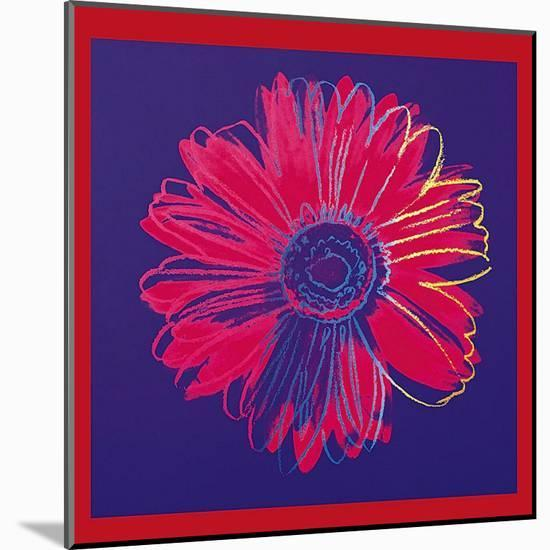 Daisy, c.1982 (Blue and Red)-Andy Warhol-Mounted Art Print