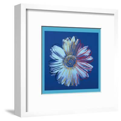 Daisy, c.1982 (Blue on Blue)-Andy Warhol-Framed Giclee Print