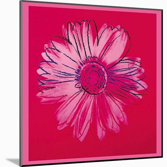 Daisy, c.1982 (Crimson and Pink)-Andy Warhol-Mounted Art Print