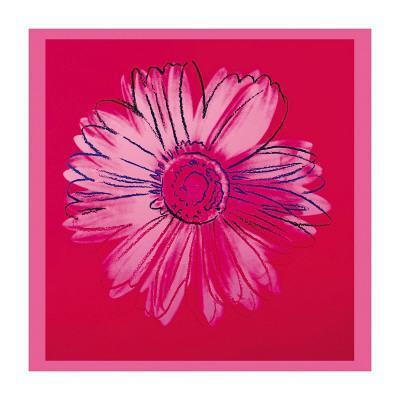 https://imgc.artprintimages.com/img/print/daisy-c-1982-crimson-and-pink_u-l-f4i7un0.jpg?p=0