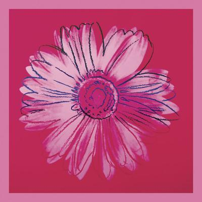 https://imgc.artprintimages.com/img/print/daisy-c-1982-crimson-and-pink_u-l-f8cg3g0.jpg?p=0