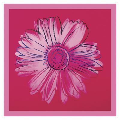 https://imgc.artprintimages.com/img/print/daisy-c-1982-crimson-and-pink_u-l-f8cg3i0.jpg?p=0