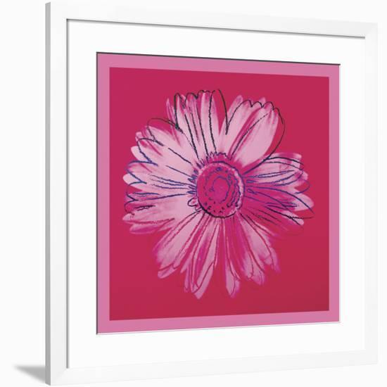Daisy, c. 1982 (crimson and pink)-Andy Warhol-Framed Art Print