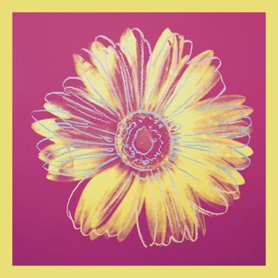 https://imgc.artprintimages.com/img/print/daisy-c-1982-fuchsia-yellow_u-l-f8cg600.jpg?p=0
