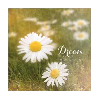 Daisy Dreams-Sue Schlabach-Art Print