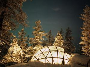 Kakslauttanen, Lapland, Finland by Daisy Gilardini