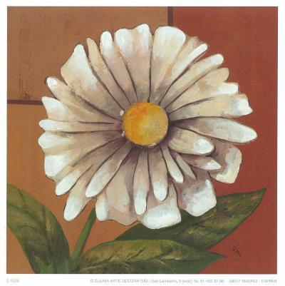 Daisy I-Ranz-Art Print