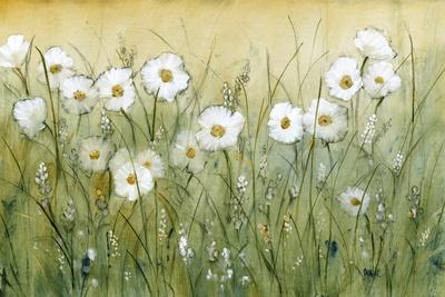 https://imgc.artprintimages.com/img/print/daisy-spring-ii_u-l-pxn4lk0.jpg?p=0