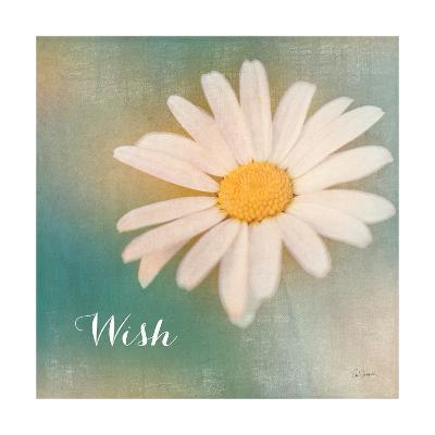 Daisy Wishes-Sue Schlabach-Art Print