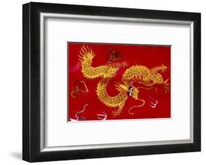 Chinese Dragon, Shenzen, China by Dallas and John Heaton