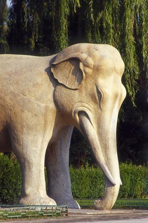 Stone Elephant, Sacred Way, Ming Tombs, Beijing, China