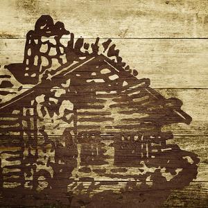 Cabin 3 by Dallas Drotz