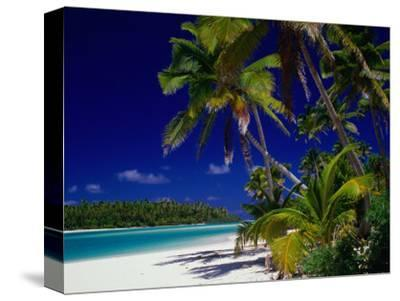 Beach with Palm Trees on Island in Aitutaki Lagoon,Aitutaki,Southern Group, Cook Islands
