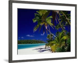 Beach with Palm Trees on Island in Aitutaki Lagoon,Aitutaki,Southern Group, Cook Islands by Dallas Stribley