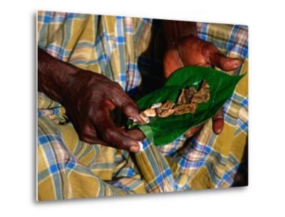 Indigenous Veddah or Wanniyala-Aetto Man Holding Betel Nuts, Colombo, Sri Lanka