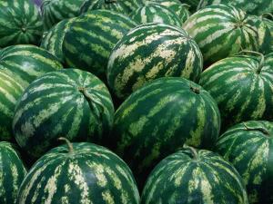 Watermelon for Sale, Trapani Market, Trapani, Sicily, Italy by Dallas Stribley