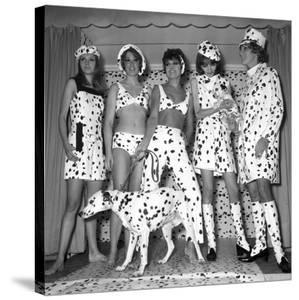 Dalmatian Fashion, Paris, 26 October 1967