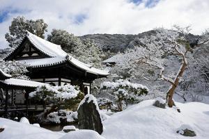 Snow-covered Zen garden in Kodai-ji Temple, Kyoto, Japan, Asia by Damien Douxchamps