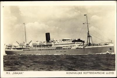 Dampfer M.S. Sibaj, Rotterdamsche Lloyd--Giclee Print
